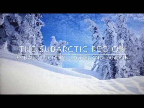 The Subarctic Region