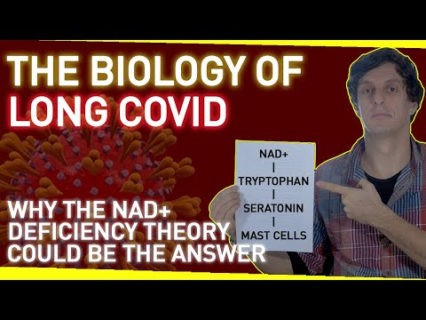 The Biology of Long Covid | Why the NAD+ Deficiency Theory Could Be The Answer