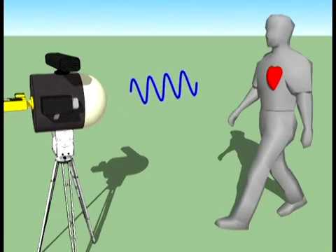 Millimeter Wave Remote Biometric Identification And