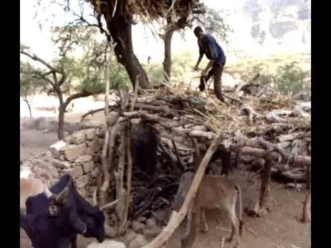 A Day in Dekilafay - a Village in Eritrea