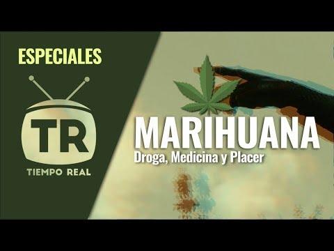 Especiales TR | Marihuana - Parte 1 | Tiempo Real, Marca Tu Generación -Cali, Colombia
