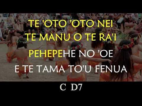 TE TAMA MA'OHI - Karaoke & Chords
