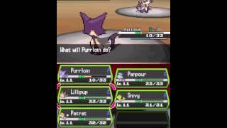 Pokemon Black - Pokemon Black (DS) - User video