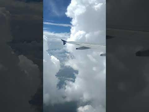 IndiGo Flight Extreme View .