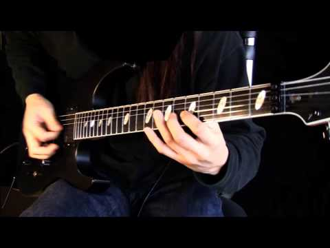 The Raven Autarchy - Anomalous Design       guitar cover