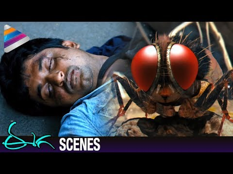 Nani Rebirth as Fly | Samantha Shocked by Nani's Demise | Eega Malayalam Movie Scenes | EECHA Movie