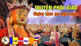 Đêm Khuya Khó Ngủ Nghe Những Câu Chuyện Phật Giáo hay thời Phật tại thế dạy trong Kinh Pháp Cú