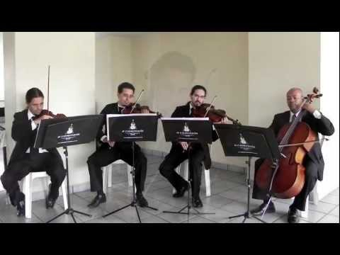 Grupo Musical A Camerata - Rolling in the deep, Adele