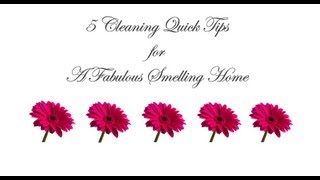 5 Cleaning TIps For A Great Smelling Home thumbnail