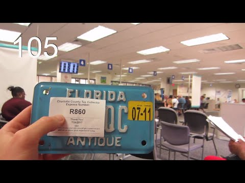 Coveted Antique Florida License Plate! | vlog 105