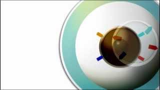 Toric Lens Nedir ? ( Astigmatism Nedir ) www.lensomani.com