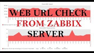 Check Web Site URL From Zabbix Server