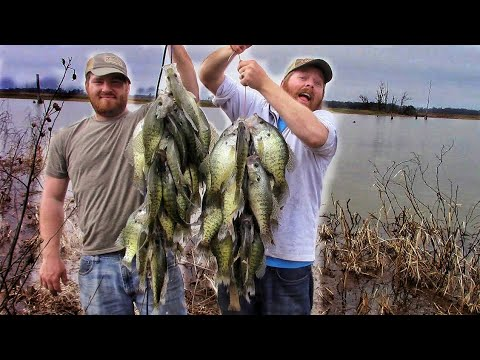 EPIC Crappie Fishing Rain Runoff From The BANK