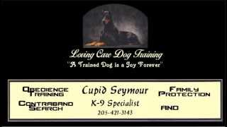Loving Care Dog Training - 205-421-3143