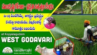 Natural pesticides || Panchagavya || Agniastra || Brahmastra and more @ West Godavari District