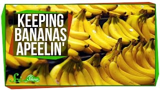 Keeping Bananas Apeelin