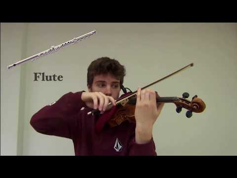 Instruments imitations on violin