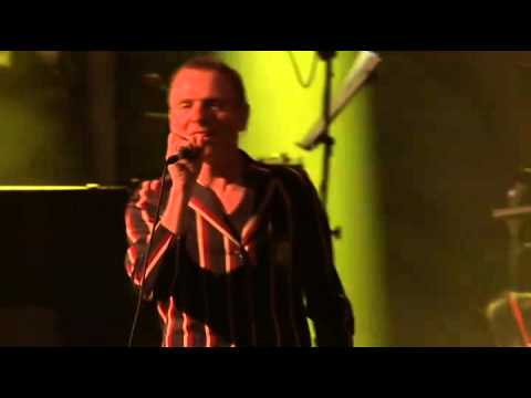 Belle & Sebastian Primavera Sound 2015 Live Full Show