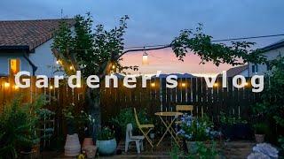 SUB) #47 정원에 데크를 설치했어요 (부제: 극한의 여름 리얼가드닝 🔥) / 오일스테인 칠하는 법