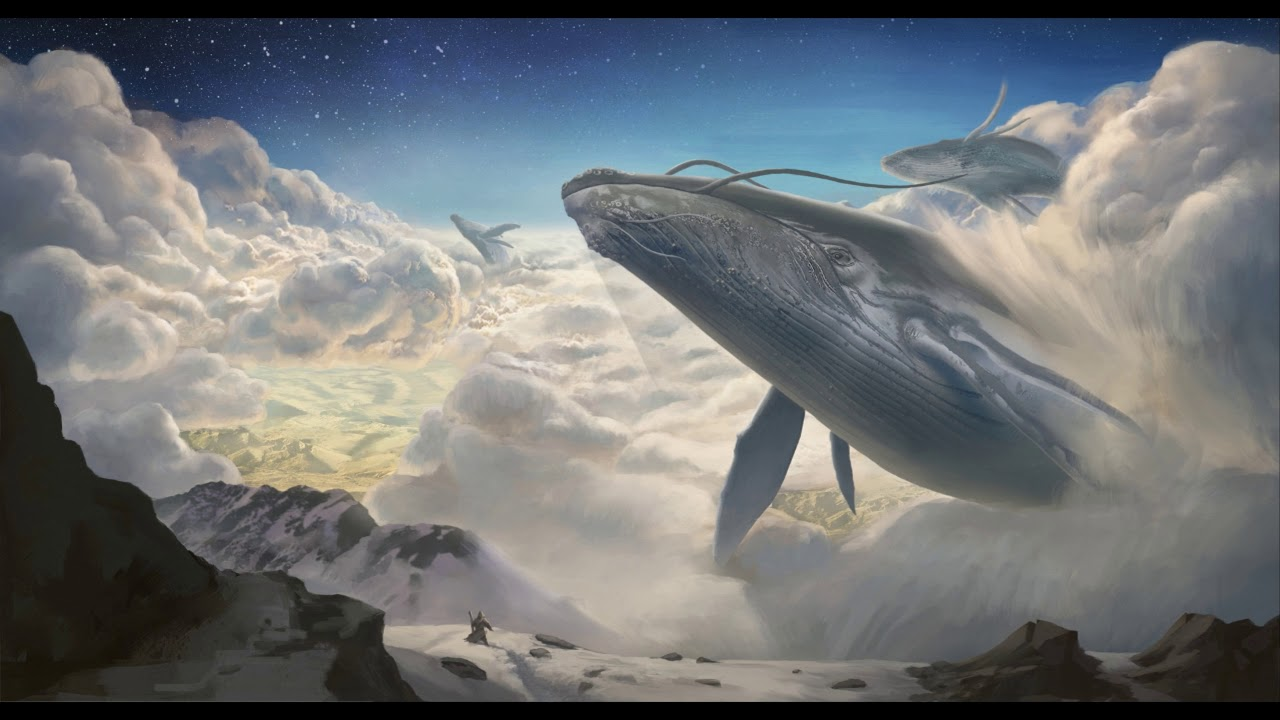 Dolphin, Whale and Morphogenic Field Expansion