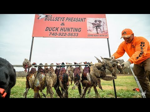 Annual Family Pheasant Hunt | Ohio Upland Hunting