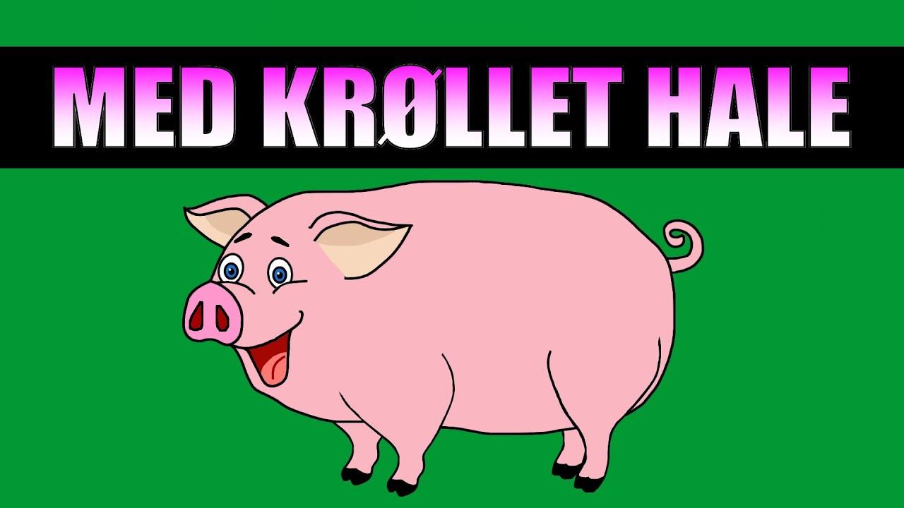 med-krllet-hale-en-sang-om-grisen-tekst-og-animasjon-pudding-tv