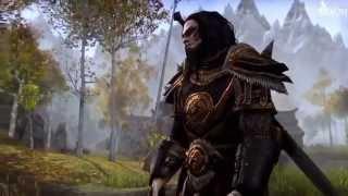 Обзор онлайн игры The Elder Scrolls Online на русском