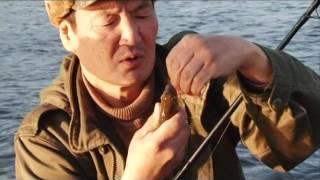 Рыбалка на реке Токко. Выпуск 119. Эфир от 27.11.12.