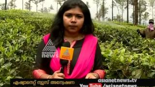 Pesticides using tea plantation | Asianet News Investion