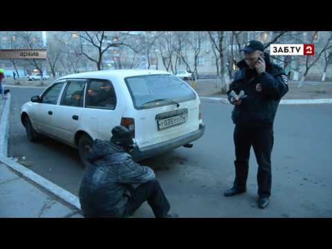 В Краснокаменске полицейские нашли плантацию конопли и поймали поджигателей машины