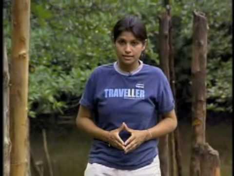 Andaman Travelogue