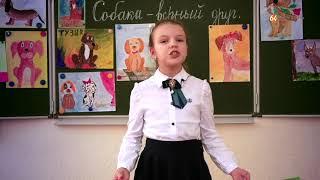 Лицеисты читают стихи про собак Аня Андреева