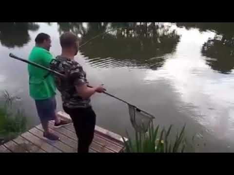 FISHING ASTON PARK   LILY   CARP