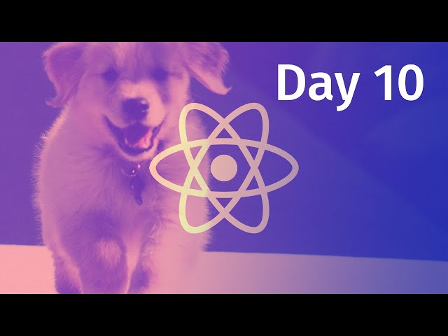 useEffect Hook In React / Load and Save State from LocalStorage: The 10 Days of React JS (Day 10)