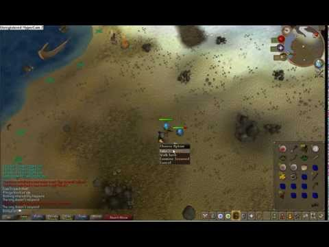 killing a rock on runescape!!!