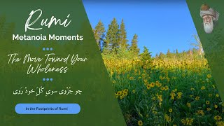 Rumi - Metanoia Moments (The Move Toward Your Wholeness)