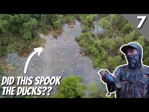 Duck Hunting 2021 Opening Day – Incredible Timber Hole
