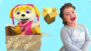PAW PATROL SKYE KUTUDAN ÇIKTI -funny kids video