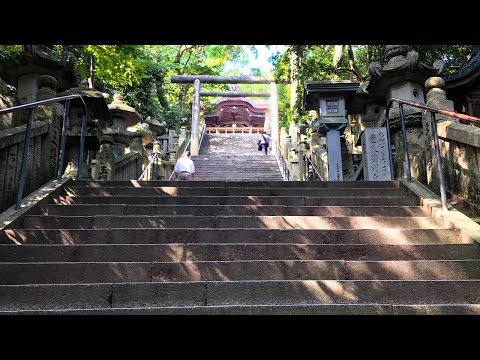 Ascend (almost) 1,368 Stairs To A Beautiful Japanese Shrine
