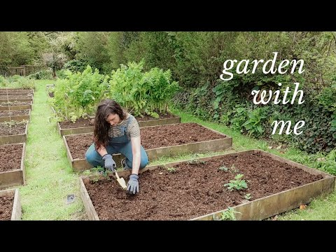 Time to Finally Sort Out Our Vegetable Garden!