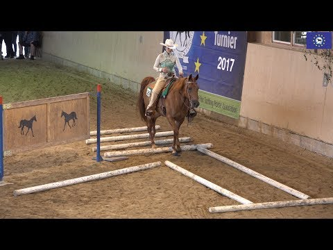European Missouri Fox Trotter High Point Tournament 2017- Trail Class