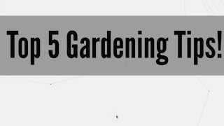 Top 5 Gardening Tips!