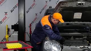 Manual del propietario Fiat Doblo Cargo en línea