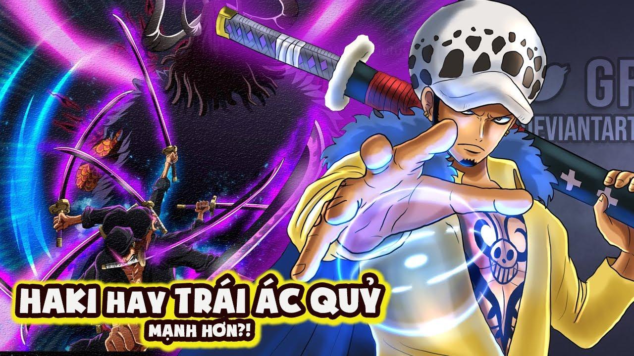 Những Lầm Tưởng Về Trái Ác Quỷ & HAKI Vũ Trang Trong One Piece [One Piece 1025+]