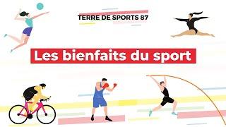 Bienfaits du sport - Terre de sports 87