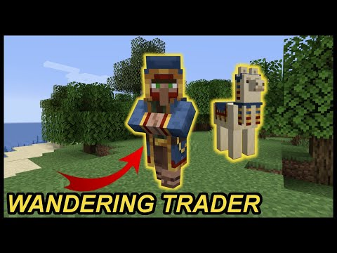 What Is A Wandering Trader In Minecraft?