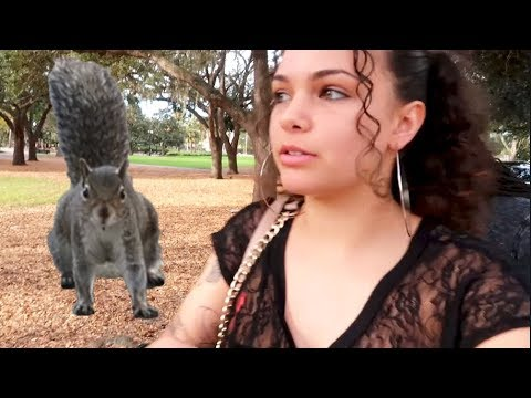 Almost got attacked by a squirrel...