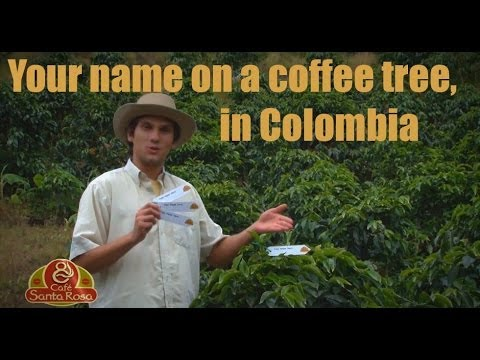 Tesco Finest Colombian Supremo Coffee Beans Review. from YouTube · High Definition · Duration:  3 minutes 47 seconds  · 337 views · uploaded on 14-10-2016 · uploaded by dmc...errrmmmm