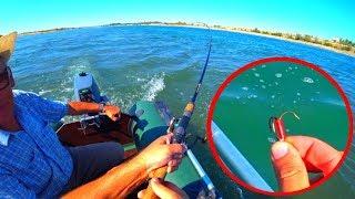 ЭТИ МОНСТРЫ РАЗГИБАЮТ КРЮЧКИ! Экспресс рыбалка, жерех судак, спиннинг.