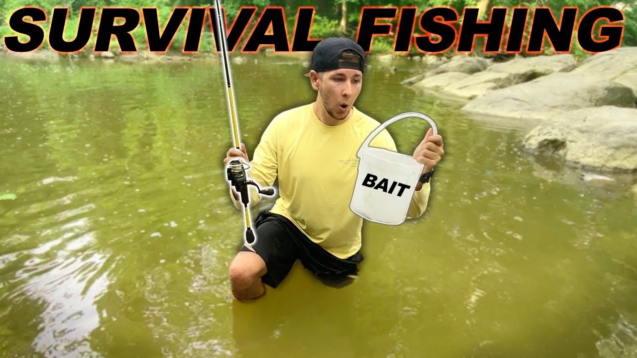 Survival Fishing Challenge!! (No Lures/Bait) Creek Edition